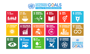 How does palliative care fit into the 2030 Agenda for SustainableDevelopment?
